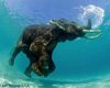 深海潜水能否把人压成面片