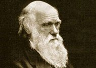 斯坦福大学:达尔文的遗产