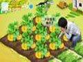 自创搞笑的QQ农场短片