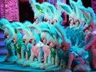 舞蹈《兔子也疯狂》(北京春晚)
