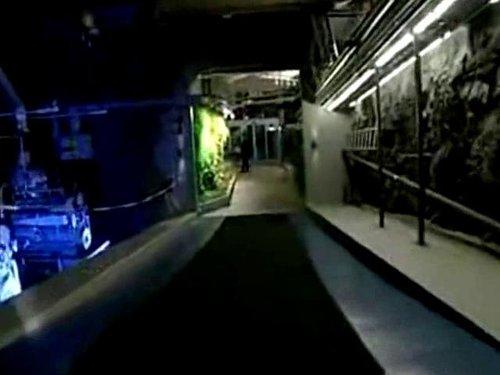 视频:维基解密新主机被曝位于军事掩体内