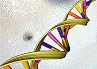 耶鲁大学:生物医学工程探索