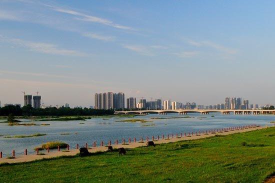 蚌埠城市化大建设 打造宜居现代化山水名城