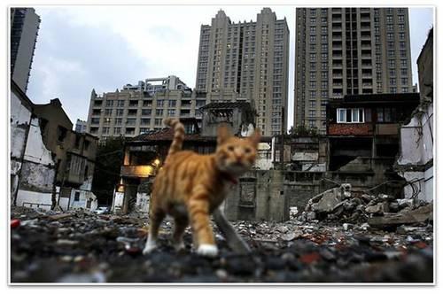 马光远:连夜紧急降温 楼市会否重蹈去年股市覆辙