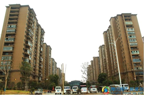 佳源东方都市1月项目进度 5期楼栋即将拆除绿网