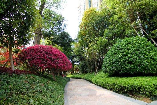 品质绿洲 演绎宜居生活新空间