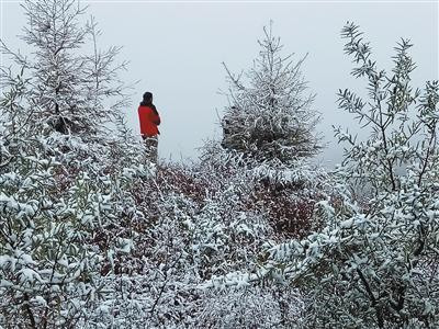 延庆、门头沟等地山区出现降雪 未达初雪标准