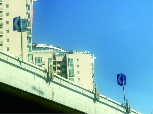 """北京""""最牛违建""""楼顶绿植被清理"""