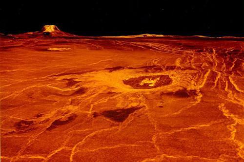 早期金星或曾宜居