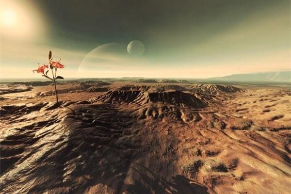 用尿液种植的螺旋藻,或许成为火星殖民者的最佳食物