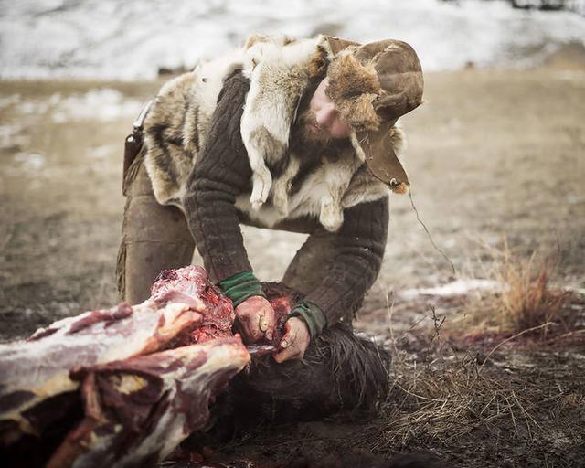 """黄石公园边 寻踪以野牛尸体为生的""""拾荒者"""""""