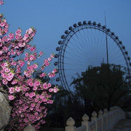 夜幕下的北京游乐园