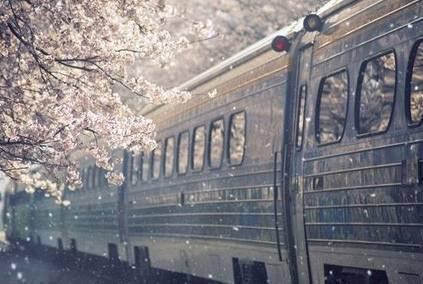 只用八张火车票,就能带你看遍最美中国