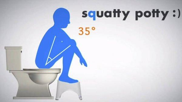 中国蹲厕逆袭了 人类尚未进化到坐着大便?