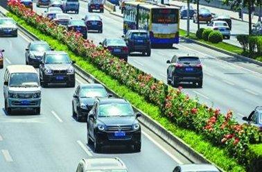 北京市环路再添5万株月季