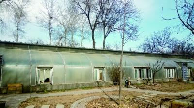 通州百余蔬菜大棚被租户改成农家院 政府认定违建责令拆除