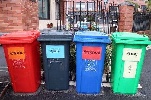 本市今年将创建224个垃圾分类示范片区