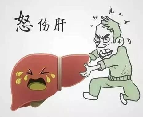生气后各大器官会发生这些惊人变化 看完后再也不敢生气了!