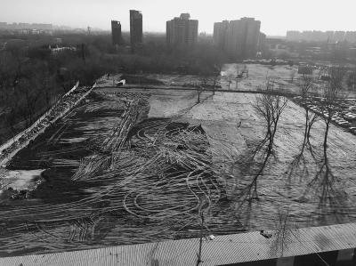 朝阳区小红门乡上万平方米报废车场清理干净