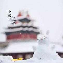 京城终于大雪,这美景如你所愿。