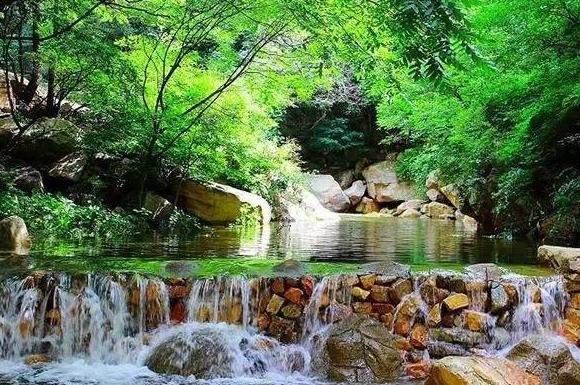 """自驾俩小时 北京不远有一片""""热带雨林"""""""