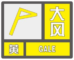 广西壮族自治区南宁市发布大风黄