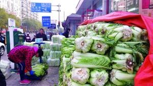 冬储大白菜,北京人往事里的温暖记忆