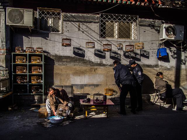 【大光圈】京津冀地区参展平遥摄影节首批入选名单