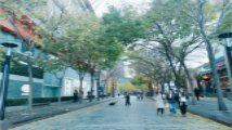 颠覆传统印象中的美食步行街 北京中关村双十一等你来