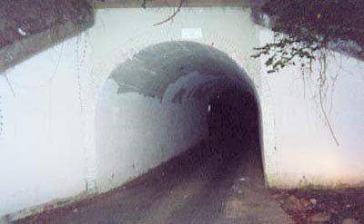 在高温中煎熬的英国人可以考虑去这五座鬼桥避暑