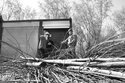 80万亩林地植物垃圾零废弃