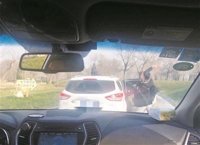 """大兴野生动物园下车""""投喂""""狗熊游客认错"""