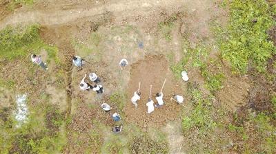 为寻远征军老兵墓 高速工程停工三天
