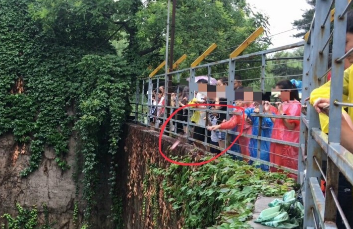 北京动物园频现游客违规投喂