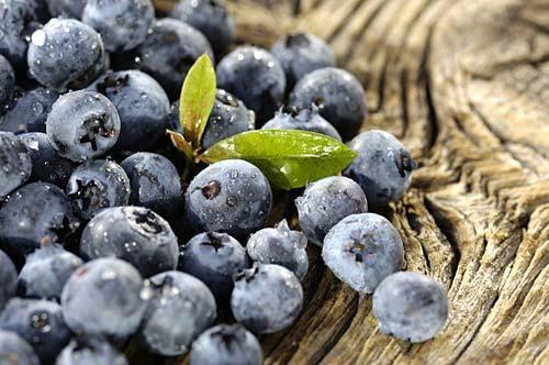蓝莓营养价值 蓝莓怎么吃最有营养?