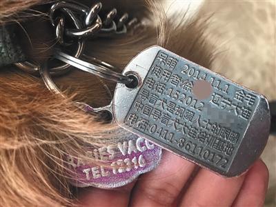 一种狗的特殊使命 导盲犬护具之争