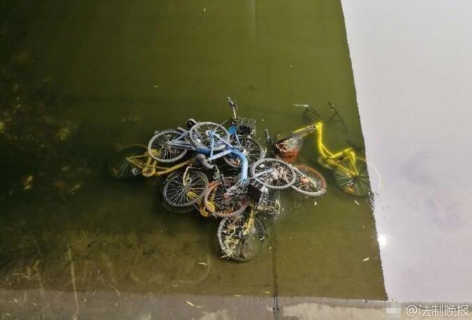 共享单车被丢护城河