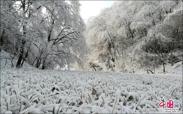 冬日水磨沟 一个山雪辉映的童话世界