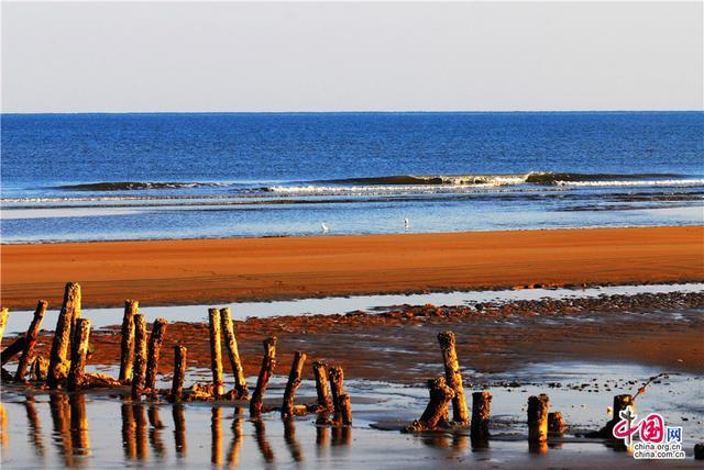 青岛——大海那无边的蔚蓝和翻卷的浪花