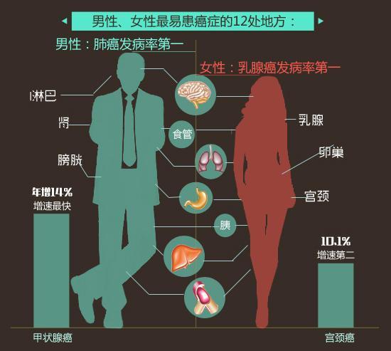 第05期:身体哪些器官最不容易得癌症