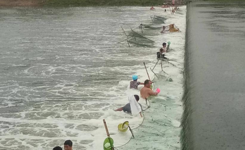 北京暴雨河道水位上涨 上百市民不顾危险下河捕鱼