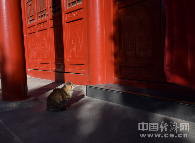 闹中取静 游北京大钟寺古钟博物馆
