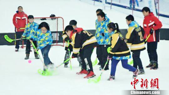 黑龙江启动百万青少年上冰雪活动 助推冰雪运动普及