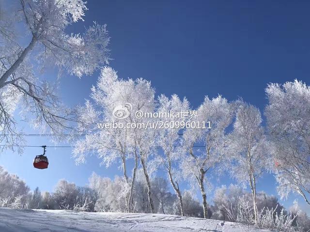 小寒腊八双至 冰雪季网络征集活动元旦特别礼物送出