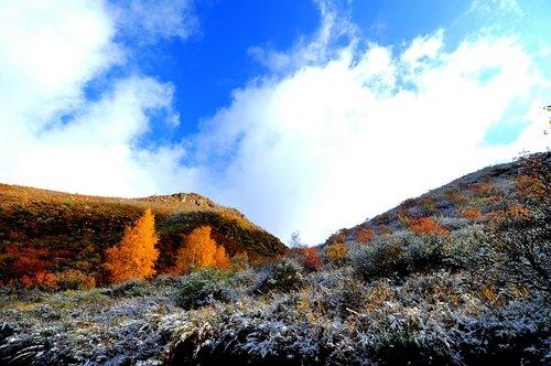 Première neige tombée en avance dans la zone de compétition de Zhangjiakou pour Beijing 2022