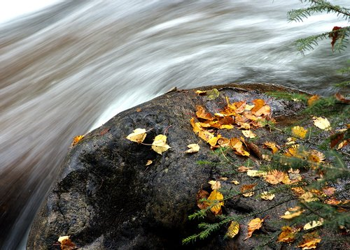 秋风送爽之际 沿着川西看层林尽染秋色无边