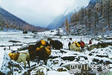 四姑娘山救援续:5名搜救者被困再派6人增援