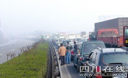 大雾天高速入口排满了等待放行的车辆