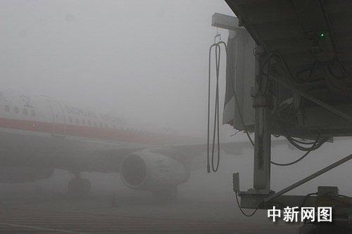 成都遭受今冬最大雾袭击 交通拥堵出行困难