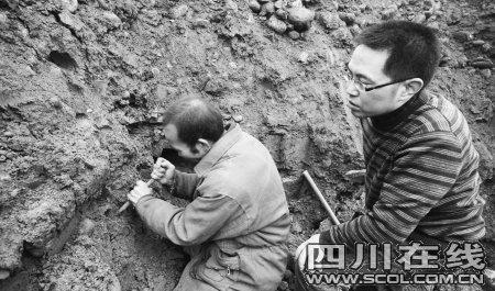 德阳什邡挖出唐宋古墓 出土文物遭野蛮哄抢